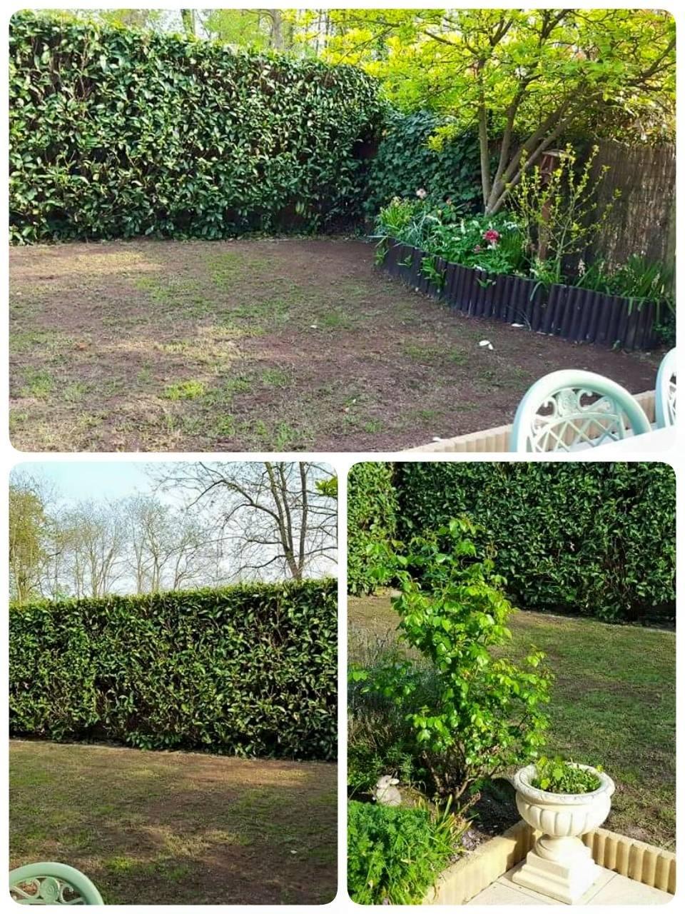 jardin: mise a niveau de l'espace jeu