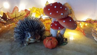 Hérisson et champignons